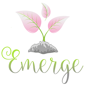 Emerge Experience