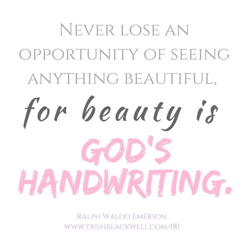 never-lose-an-opportunity-of-seeing-anything-beautiful