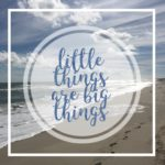 THE LITTLE THINGS ARE THE BIG THINGS